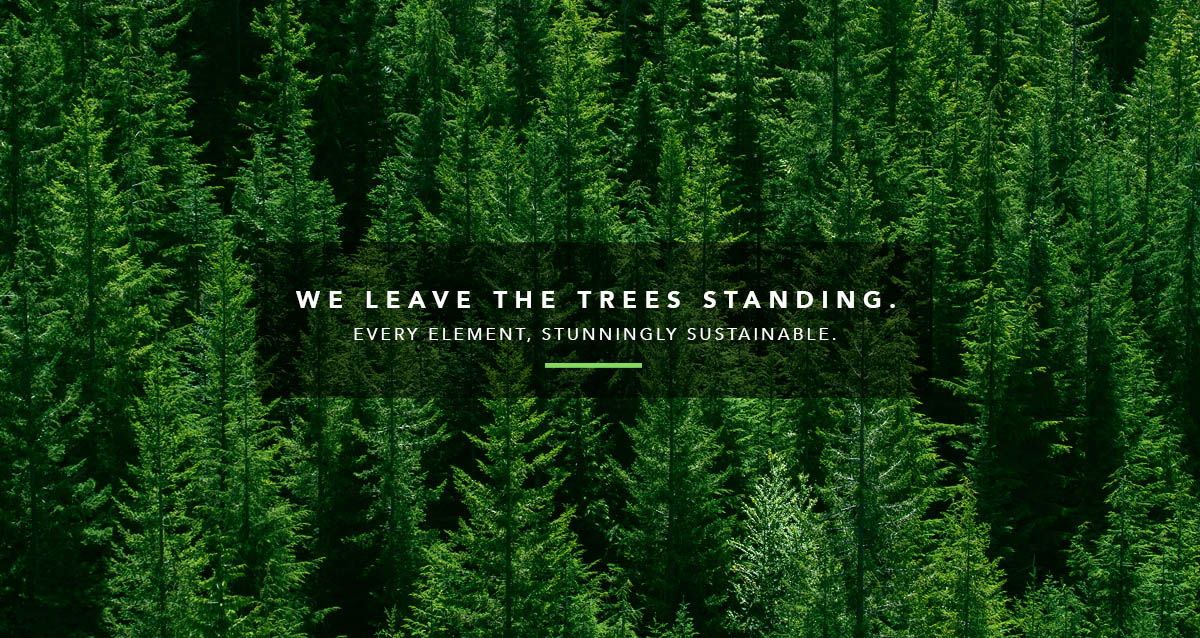 We Leave the Trees Standing.