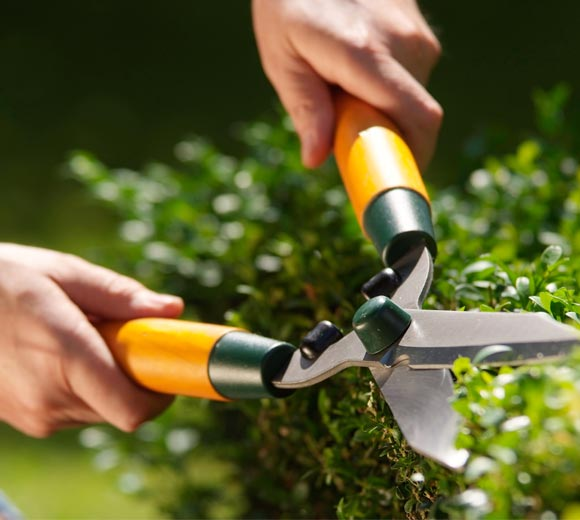 The Ultimate Outdoor Spring Cleaning Guide