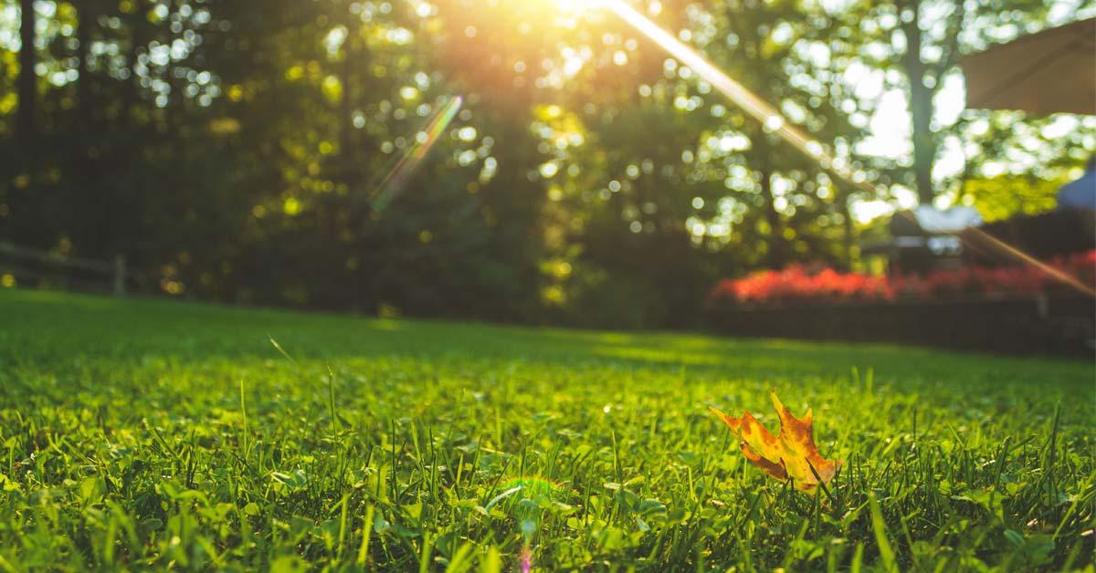 Your September Home Maintenance Guide